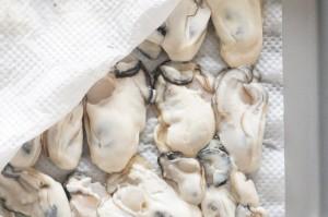 牡蠣の下ごしらえ